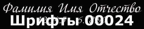 Шрифты 00024