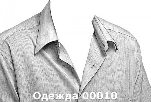 Одежда 00010
