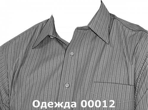 Одежда 00012